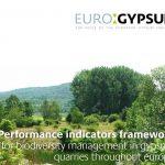 Eurogyspum guide