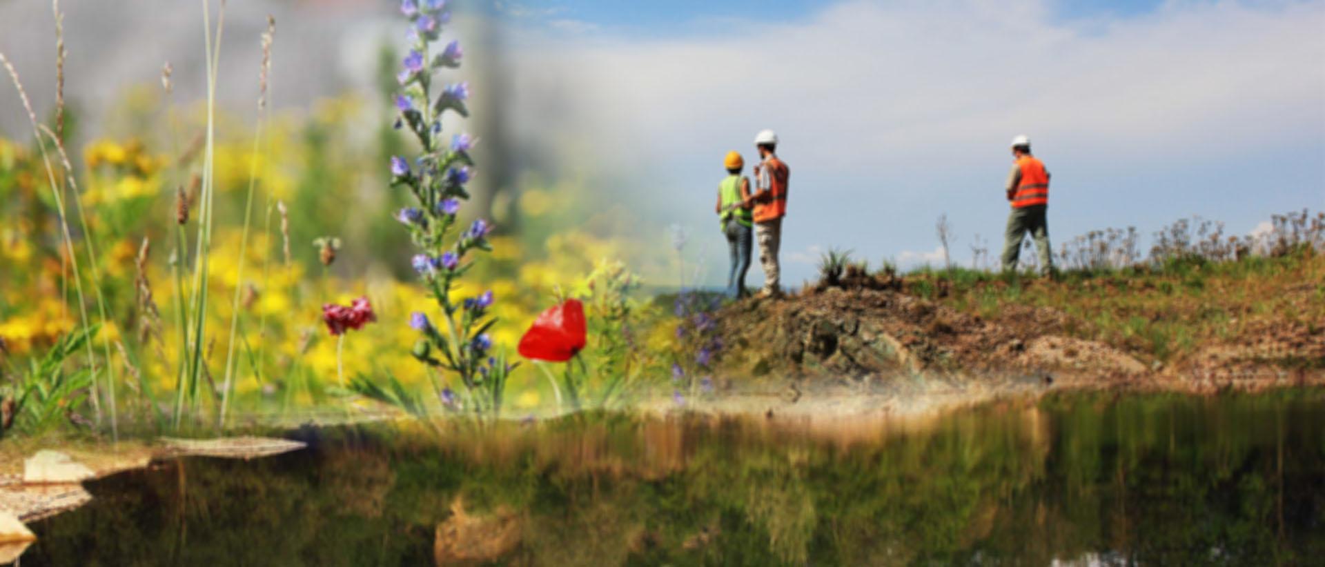 Biolandscape – Biodiversity, where you do not expect it!